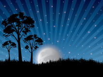 Night sky. Abstract ray night in nature with trees and moon royalty free illustration