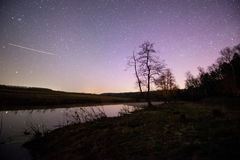 Night sky above field and forest. Stock Images