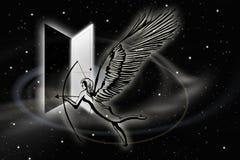 Night sky - angel Royalty Free Stock Photo