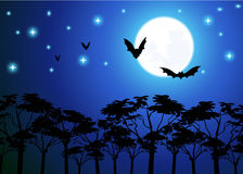 Night Sky. Blue night sky with moon and bats Royalty Free Stock Photo