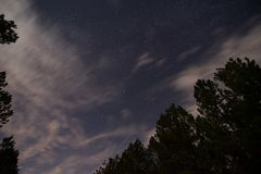 Night sky and clouds over rural Louisiana forest stock image