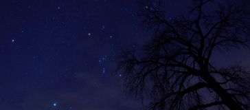 The Night Sky is full of Constellations in Ottertail county in Central Minnesota.  stock photos