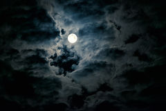 Night sky with full moon Stock Photography
