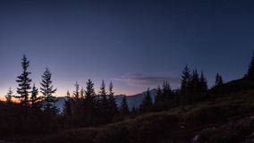 Night sky full of stars just before sunrise in mountains. Above trees with visible orion constellation royalty free stock photo