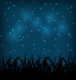 Night sky with grass field Royalty Free Stock Image