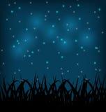 Night sky with grass field. Illustration night sky with grass field - vector Royalty Free Stock Image