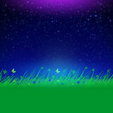 Night sky with grass frame for your text Royalty Free Stock Photo