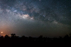 Night sky landscape of The Milky way above  forest Royalty Free Stock Images