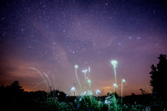 Night sky with Milky Way Royalty Free Stock Photography