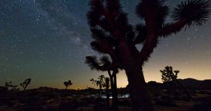 Night Sky Milky Way Joshua Tree Landscape stock video footage