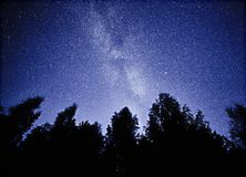 Night sky with the Milky Way over the forest and trees. The last light of the setting Sun on the bottom of the image Royalty Free Stock Photos