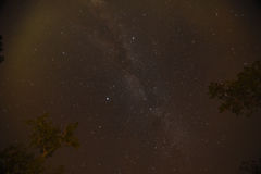 Night sky with the Milky Way over the forest and trees Royalty Free Stock Images