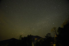 Night sky with the Milky Way over the forest and trees Royalty Free Stock Photography
