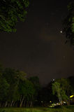 Night sky with the Milky Way over the forest and trees Stock Photos