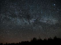 Night sky and milky way stars, Cygnus and Lyra constellation over forest stock images