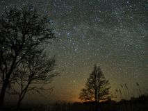 Night sky and milky way stars, Perseus, Cassiopeia over field. Night Sky observing after sunset stock photo
