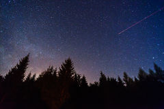 Night sky. Over forest trees, jet trail visible Stock Photography