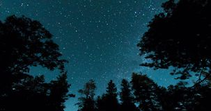 Night Sky Over Forest Treetops. Starry long exposure time lapse. Scenic Night Landscape with Stars and Milky Way. Mendocino National Forest, California stock video