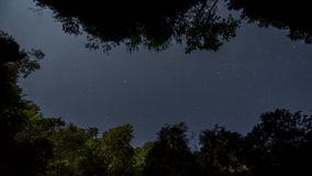The night sky over gorge. The clean night sky over gorge and trees 4K time lapse stock footage
