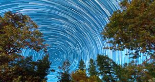 Night Sky Over Treetops. Star trail. Star trails with North Star in the center, over the  treetops in this dark sky outdoors time lapse stock footage