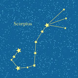 Night Sky with Scorpius Constellation Illustration Stock Photo