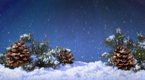 Snow falling onto pine cones and evergreen tree branches stock images