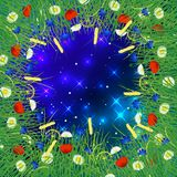 Night sky with sparkling stars. Around the frame of wild herbs and flowers stock illustration