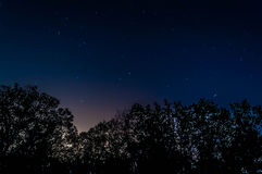 Night sky. Star trails on the night sky above the forest near the city Royalty Free Stock Photography
