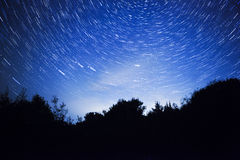 Night sky, star trails and  forest Royalty Free Stock Image