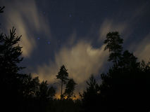 Night sky stars forest clouds big dipper constellation Royalty Free Stock Photos