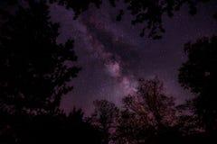 Night, Sky, Stars, Galaxies, Trees Royalty Free Stock Photo