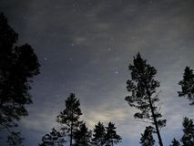 Night sky stars Leon constellation over forest Royalty Free Stock Images