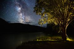 Night sky with stars. And The Milky Way Galaxy and higlighted tree on the coast of river of Chuya. Altai, Russia stock photography