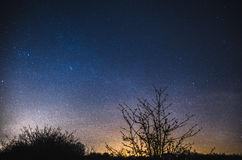 Night sky stars with milky way over trees. Milky way shining above trees. Photo taken in Silesia region, Poland in March 2017 Royalty Free Stock Photo