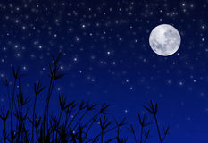 Night Sky with Stars and Moon Stock Image