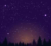 Night sky stars and night forest royalty free illustration
