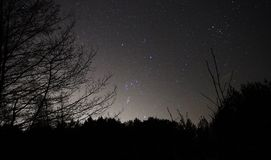 Night sky stars Orion constellations observing. Orion big nebula M42 and stars stock images
