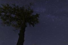 NIGHT SKY WITH STARS Royalty Free Stock Photos