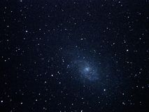 Night sky stars and galaxy M33 Royalty Free Stock Images