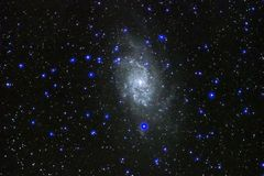 Night sky stars triangulum Galaxy M33 observing royalty free stock image