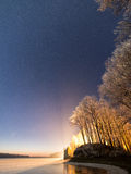 Night sky with stars in the winter night with trees Royalty Free Stock Photo