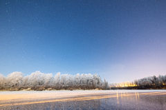 Night sky with stars in the winter night with trees Stock Photos
