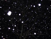 Night Snow. Snow falling in the dark of night Royalty Free Stock Image