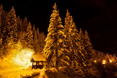 Night snow Royalty Free Stock Photos