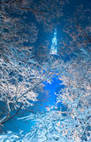 Night snowfall view of Namsan tower of Seoul Royalty Free Stock Photography