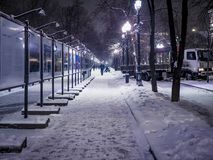 Night snowy winter landscape in the alley of city park. With walking people Royalty Free Stock Photo