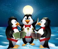 Night song of penguins. The three penguins stays on the top of iceberg and singing night song against full moon drawn in cartoon style vector illustration
