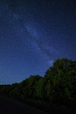Night starry sky and the forest for background Stock Photography
