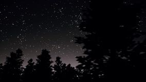 Night starry sky and trees silhouettes panorama 3d realistic footage