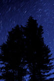 Night Stars Silhouette Trees Stock Photography